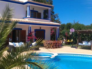 Richard's villa 8pax - Algarve vacation rentals