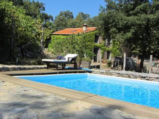 Ricky's world with swimming pool in Lerici/5Terre - Liguria vacation rentals