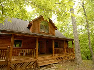 Warm & Comfortable 3BR Cabin - Right on the Lake w/ Private Dock! - New Tazewell vacation rentals