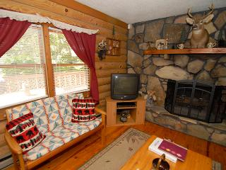 Authentic Lakefront 3BR Cabin w/ Private Dock & Hot Tub *NEW PHOTOS* - Tennessee vacation rentals