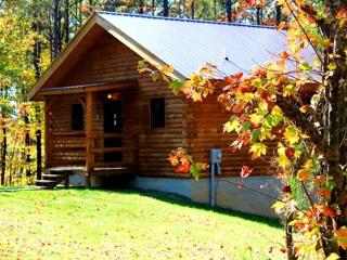 Buffalo Lodging Company- Moonlight Ridge Cabin - Logan vacation rentals