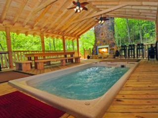 *PARADISE* Swimspa, Tunnels, Wi-Fi, Fishing, XBOX, - Gatlinburg vacation rentals