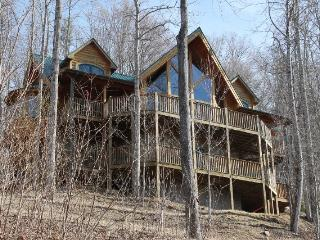 LOG CABIN!!!!! NEW FOR 2014.Large Hot Tub. Stay for 7 nights in August and receive a ten percent discount. - Burnsville vacation rentals