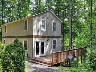 The Chicken Coop, Very Clean, King in Master, View of Cane River, Private, 40 minutes to Asheville NC. - Burnsville vacation rentals