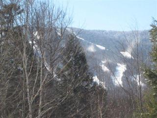 Sugarbush/Wedding Summer base for family fun/Farmers Market/Hike/Bike/Swim/Celebrate Summer! - Fayston vacation rentals