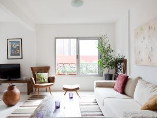 Luminous 1 Bedroom Apartment in Itaim Bibi - Buenos Aires vacation rentals