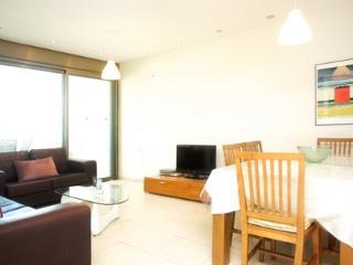Raanana Luxury 3 BR with a great Sun balcony - REF07 - Ra'anana vacation rentals