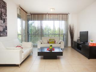 Raanana Luxury 3 BR apt + sun balcony - REF14 - Ra'anana vacation rentals