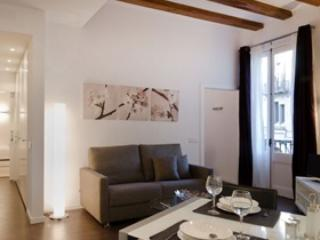 Modern and cosy flat - Barri Gòtic Barcelona 37  - managed by travelingtolisbon - Image 1 - United States - rentals