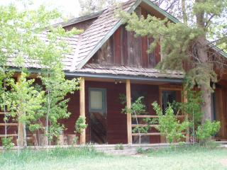 Comfortable, Quaint Cabin 5 miles to the North Gate of Yellowstone - Gardiner vacation rentals
