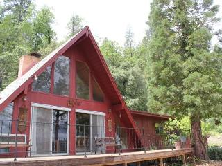 Disoover Peaceful Private Owl Lodge & Tahoe Forest - Nevada City vacation rentals
