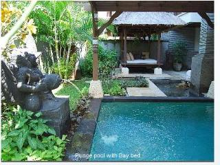 Gorgeous villa with pool, WiFi, private beach - Nusa Dua vacation rentals