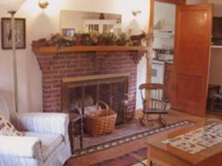 Cozy Living room, central A/C, fireplace, views,TV/DVD, WiFi - N. Conway, mtn. house, A/C ,horse rides, Saco R. swim - North Conway - rentals