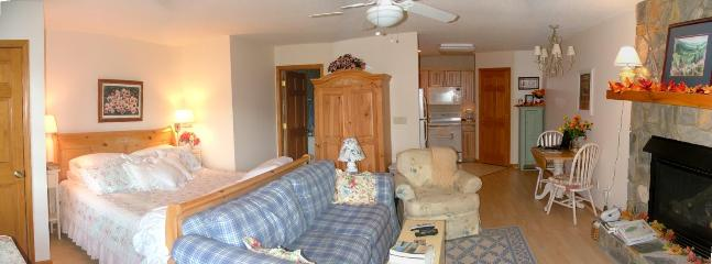 Mountain Suite With Stunning Views & Deck Dining - Image 1 - Maggie Valley - rentals