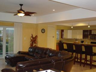 Vista Mar 5D - Jaco vacation rentals