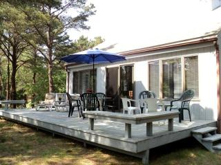 Comfort & privacy near Lt. Island (1295) - Wellfleet vacation rentals