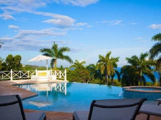 Ocean view Allamanda Villa with saltwater infinity pool, near beach & golf - Jamaica vacation rentals