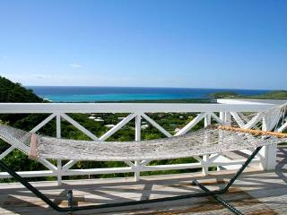 Great Ocean View Blue Yonder 2/2 with Private Pool - Saint Croix vacation rentals