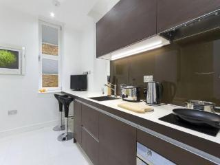 The Albany Studio Executive Apartment - London vacation rentals
