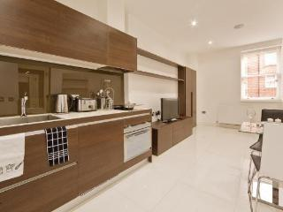 The Albany Studio Superior Apartment - London vacation rentals