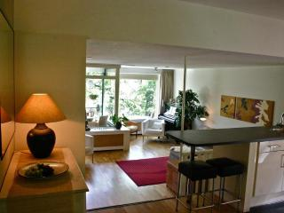 Luxurious Apartment - Close to Everything - The Hague vacation rentals