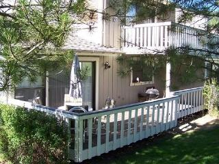 #49 ASPEN Beautiful decor in the inner circle. 185.00-$220.00 BASED ON FOUR PEOPLE OCCUPANCY AND NUMBER OF NIGHTS (plus county t - Plumas County vacation rentals