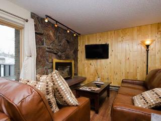 Storm Meadows 300-400 at Christie Base - SM334 - Steamboat Springs vacation rentals