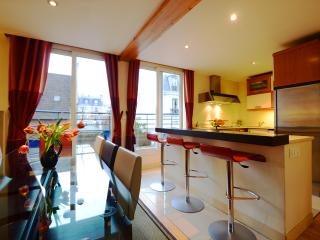 ***5 bedroom penthouse*** with private spa and jacuzzi Paris - 14th Arrondissement Observatoire vacation rentals