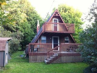 Lake Ontario/Pulaski/Sandy Pond, NY - A Frame Cottage - Private Beach - Pulaski vacation rentals