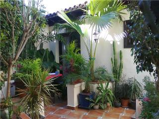 Apartment for 2 persons in Icod de los Vinos - Icod de los Vinos vacation rentals