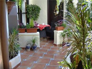 Apartment for 3 persons in Icod de los Vinos - Icod de los Vinos vacation rentals