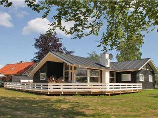 Newly built holiday house for 11 persons in North-western Funen - Brenderup vacation rentals