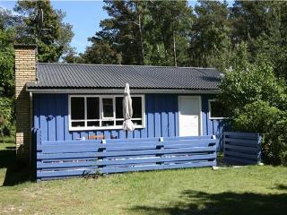 Renovated holiday house for 4 persons near the beach in Dueodde - Bornholm vacation rentals