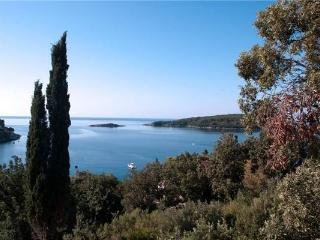 Apartment for 3 persons near the beach in Cavtat - Molunat vacation rentals