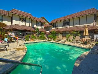 Chelan Lakeside Villa C7 - Manson vacation rentals