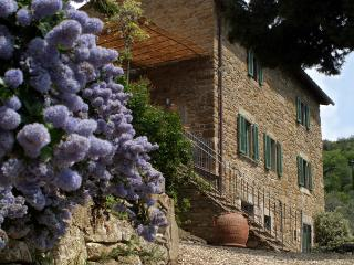 Nelly - Cortona vacation rentals