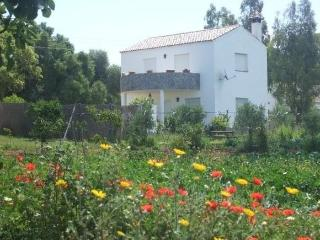 Attractive holiday house for 5 persons in Vejer de la Frontera - Vejer De La Frontera vacation rentals