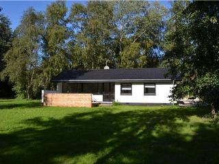 Newly renovated holiday house for 5 persons in Odsherred - West Zealand vacation rentals