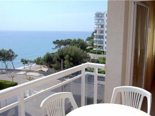 Apartment for 6 persons, with swimming pool , near the beach in Miami Playa - Costa Dorada vacation rentals