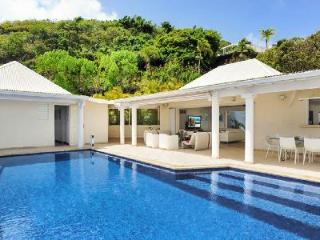 Hillside Bel Ombre on one-level with rooms opening onto infinity pool terrrace & views - Marigot vacation rentals