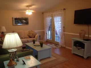Our dream at the beach-First time offered! - Surfside Beach vacation rentals