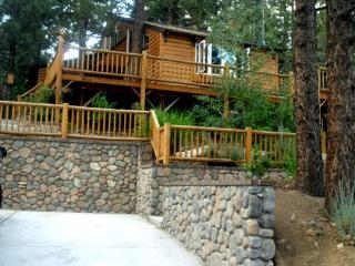 #081 Arizona Bear - Big Bear Lake vacation rentals