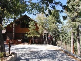 #008 Amazing Views Estate - Big Bear Lake vacation rentals