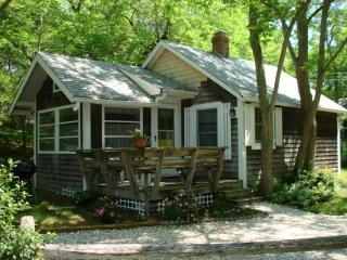 Darling cottage up the street from the Bay Beach - Wellfleet vacation rentals