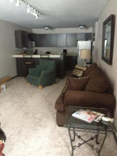 Comfy,convenient,charming condo in East Vail - Beaver Creek vacation rentals