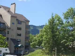 Mountain Green Unit 1-B9 - Killington Area vacation rentals