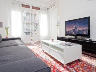 Modern stylish apartment in the center of Nice - Nice vacation rentals