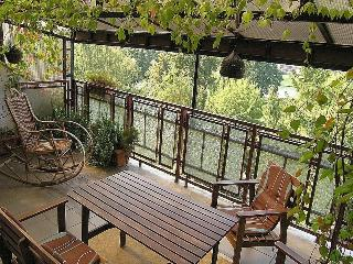 Kazimierz Apartment, 2 bdr, great terrace with river view - Poland vacation rentals
