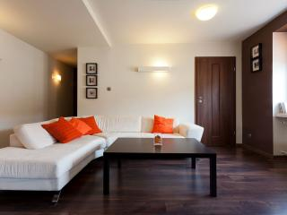 Modern 2bdr Irish Apartment with balcony - Krakow vacation rentals