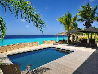 Kas Chapin boasts expansive wooden deck, saltwater pool & direct access to the coral reef - Kralendijk vacation rentals